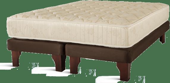 BaseChocolate