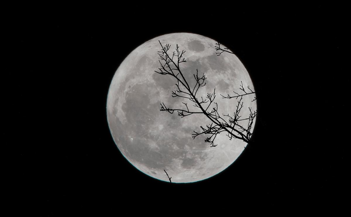 ¡Absorbe la mejor energía de la luna!